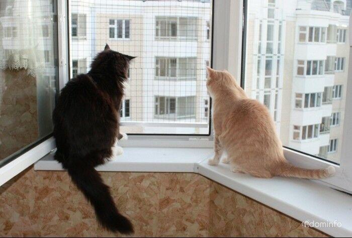 Окна ПВХ безопасные для домашних животных